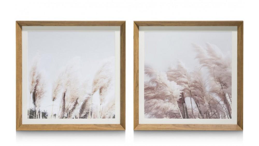 Pampas Set Van 2 Fotoschilderijen 50X50cm